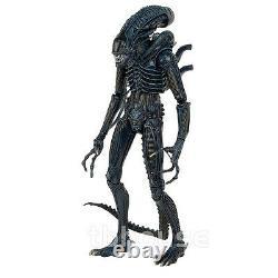 22 ALIEN WARRIOR BLUE figure 1/4 SCALE XENOMORPH 1986 VERSION aliens movie NECA